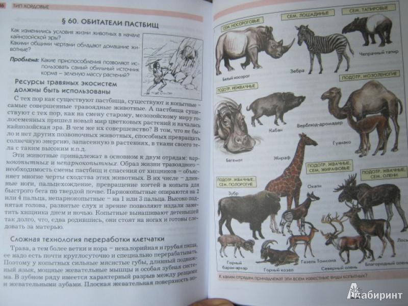 Анатомия человека 9 класс читать