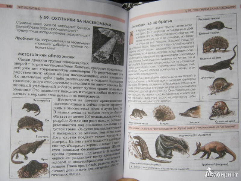 Биология 7 Класс Вахрушев
