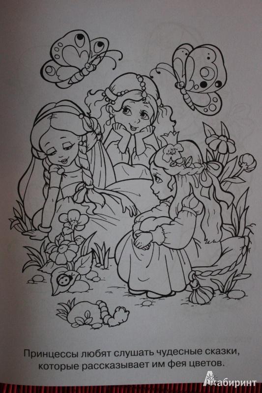 Иллюстрация 1 из 4 для Феи и принцессы | Лабиринт - книги. Источник: Глушко  Александр