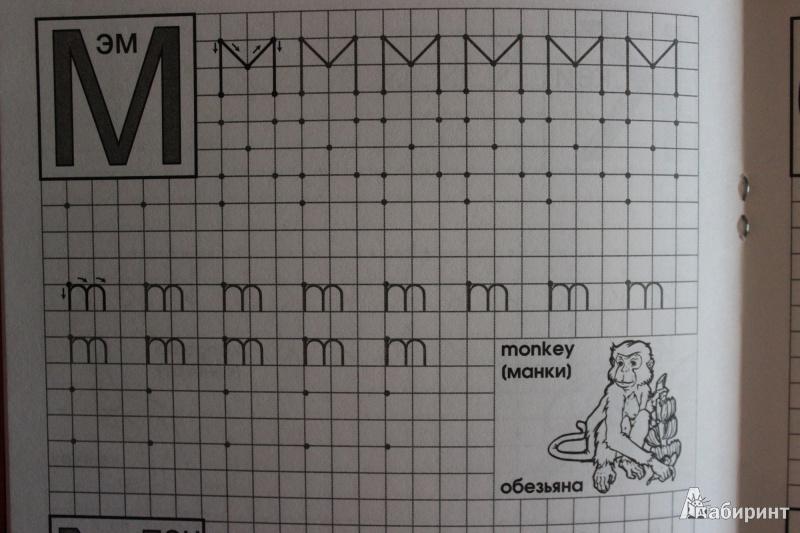 Иллюстрация 4 из 6 для книги английские