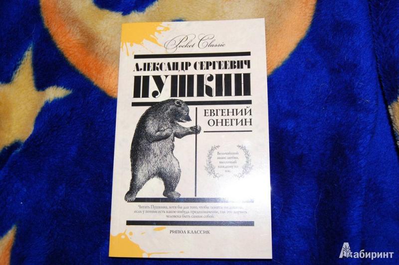 Иллюстрация 1 из 29 для Евгений Онегин - Александр Пушкин | Лабиринт - книги. Источник: evil_academic