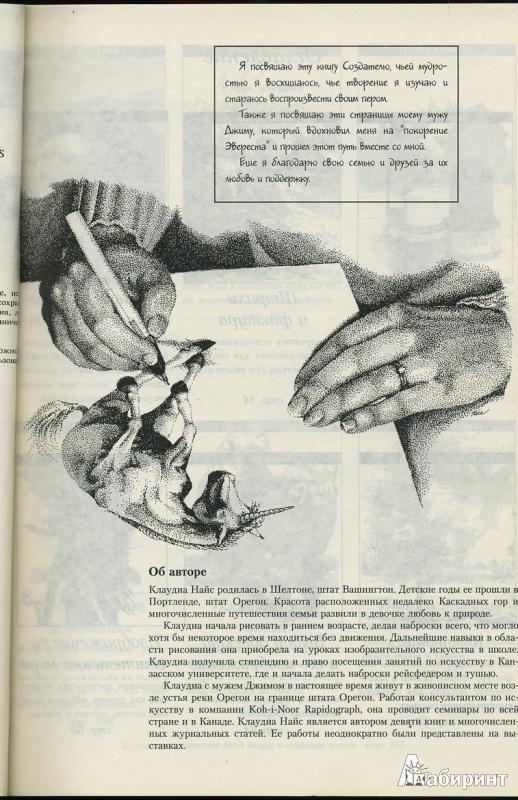 Иллюстрация 2 из 29 для рисунок тушью