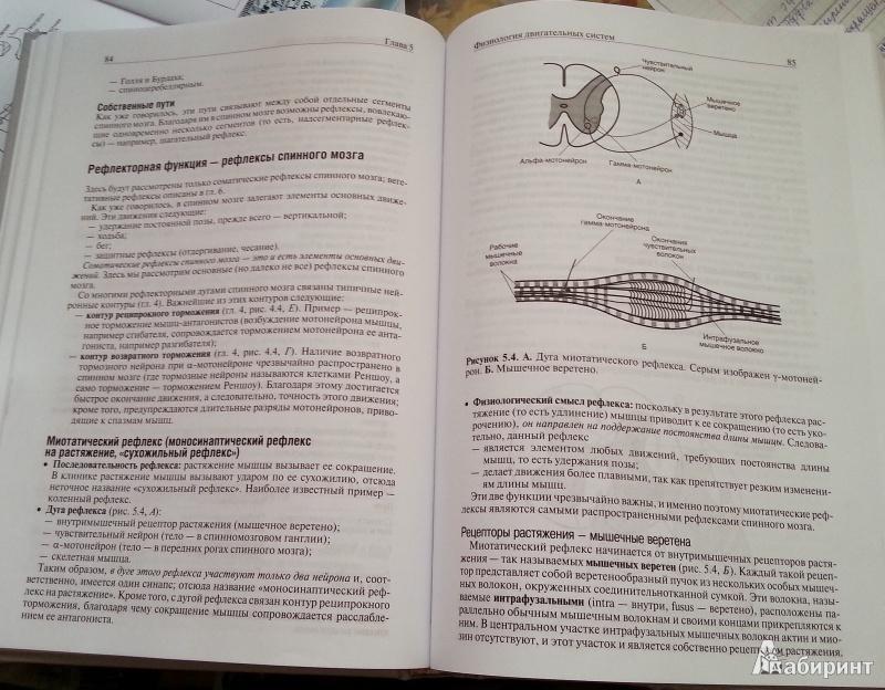 учебник по физиологии алипов скачать