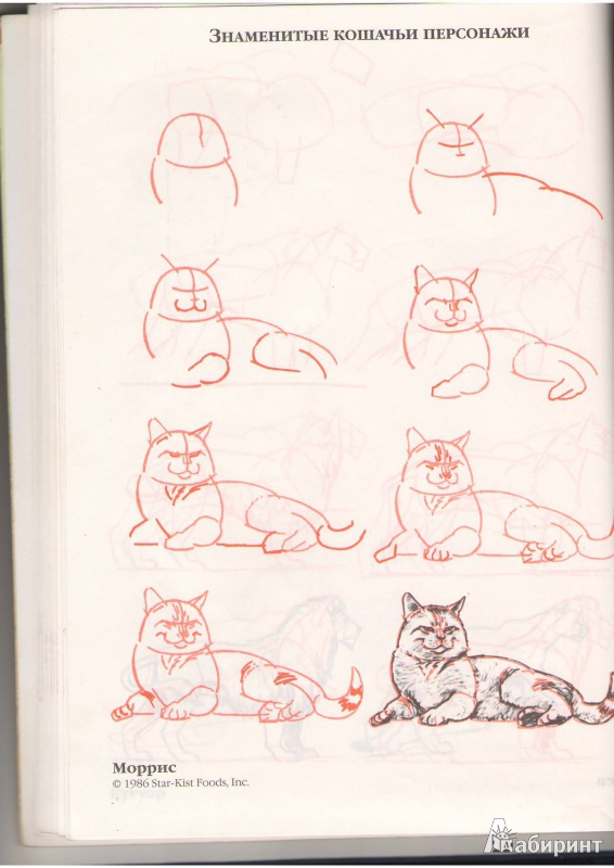 Как нарисовать кошку своими руками 52