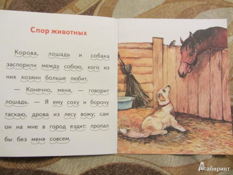 Викторина по сказкам профессиональный педагог