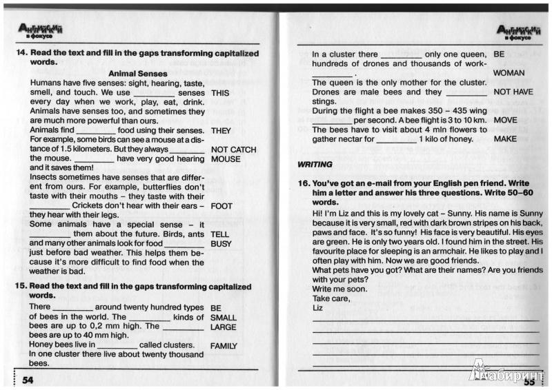 Решебник ГДЗ ответы по английскому языку 5 класс Spotlight