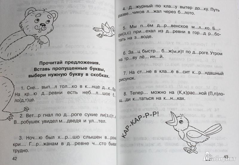 Два брата евгений шварц читать краткое содержание