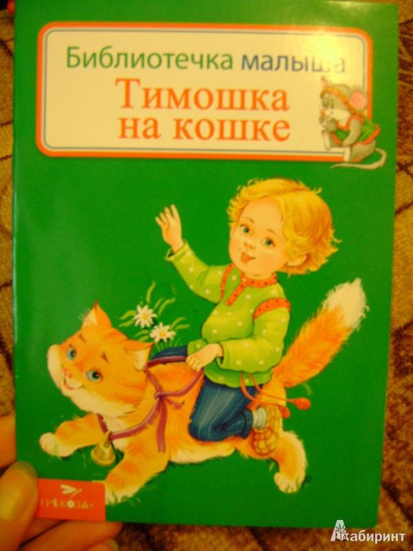 Иллюстрация 1 из 16 для Тимошка на кошке | Лабиринт - книги. Источник: anchutka