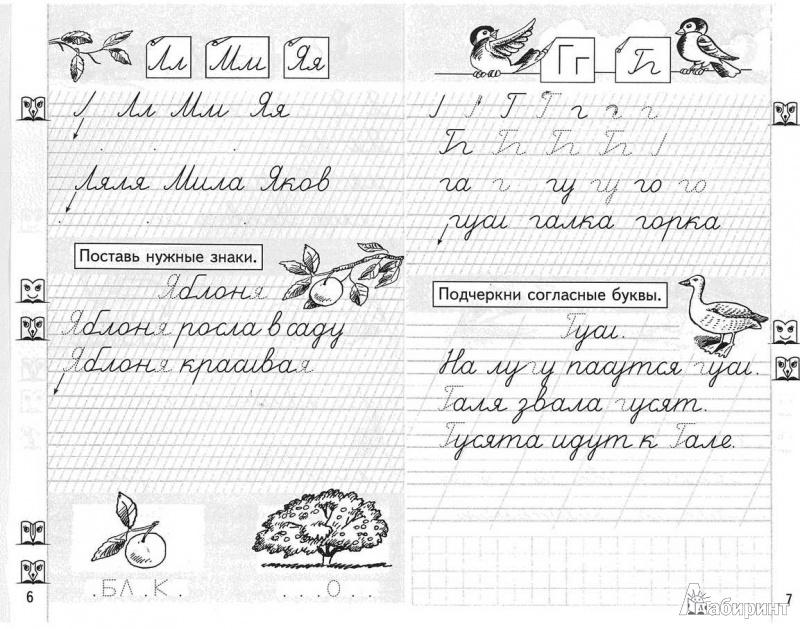 Иллюстрация 1 из 19 для Учимся писать. Прописи для 1 класса. В 4-х частях. Часть 3 - Любовь Ефросинина | Лабиринт - книги. Источник: TNadin