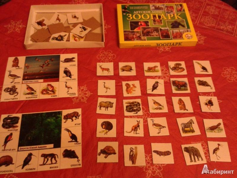 Иллюстрация 1 из 10 для Лото детское: Зоопарк (00083, 12106) | Лабиринт - игрушки. Источник: Короткая  Надежда