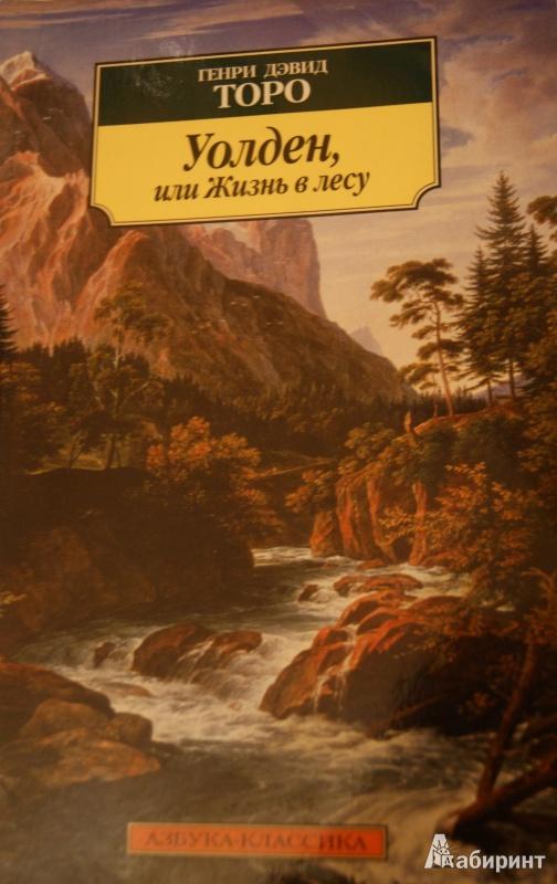 Иллюстрация 1 из 11 для Уолден, или Жизнь в лесу - Генри Торо | Лабиринт - книги. Источник: Боркунова  Яна