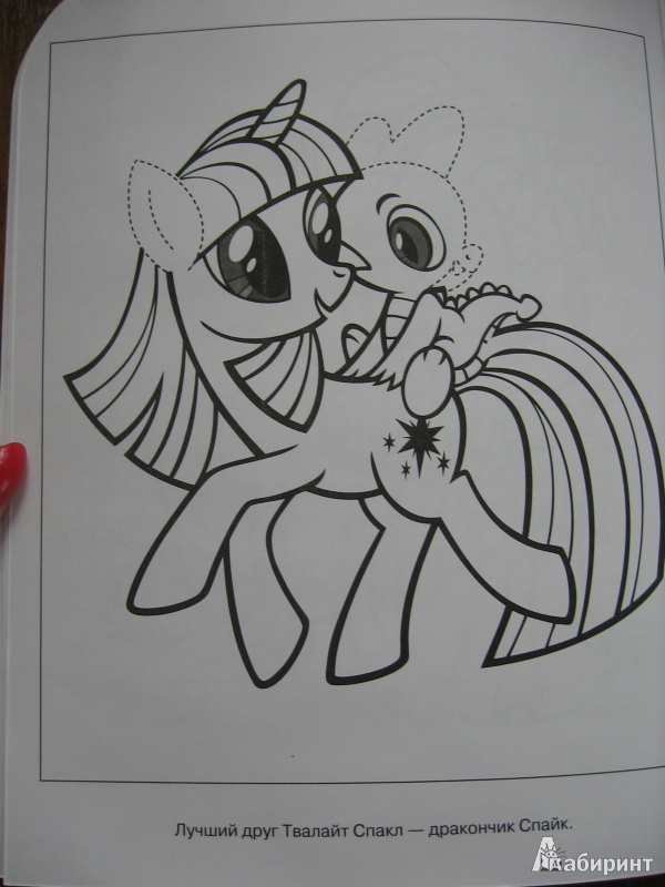 пони картинки из мультика мой маленький пони