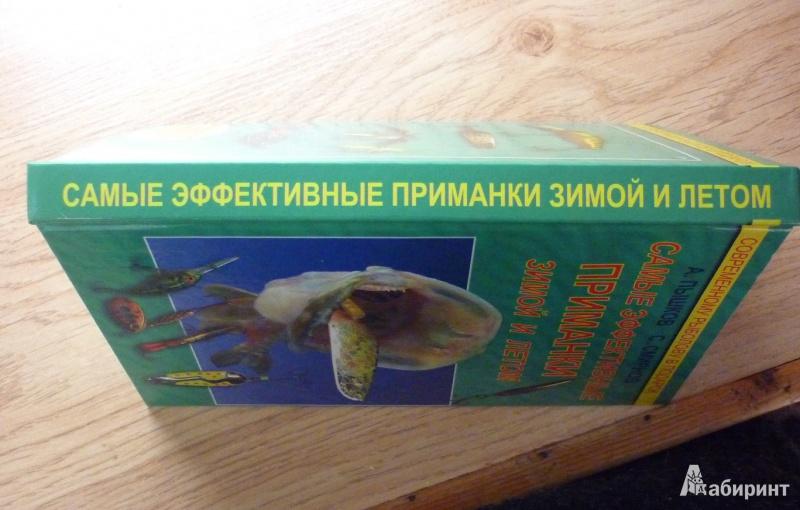 Эффективные прикормки для рыбалки