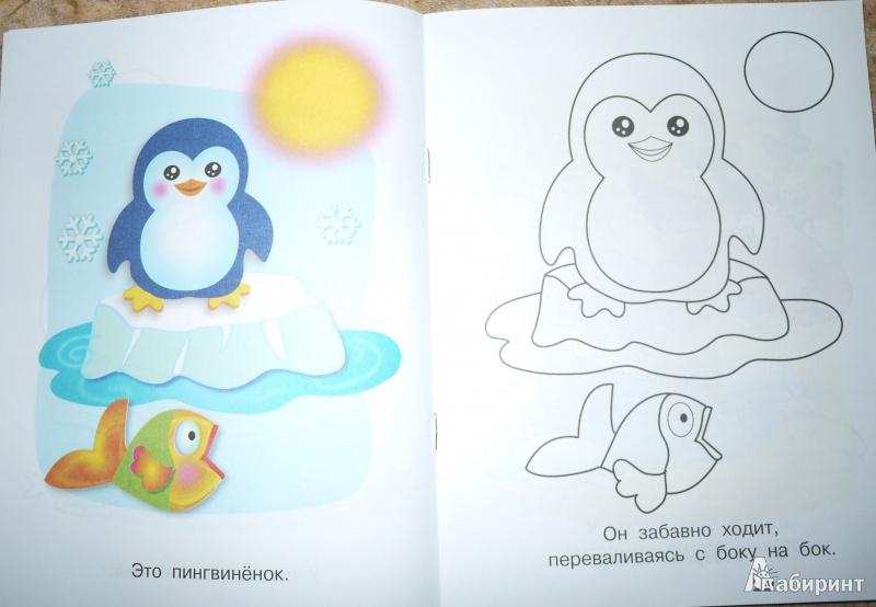 Иллюстрация 1 из 8 для На Северном и Южном полюсах. Пингвиненок | Лабиринт - книги. Источник: Мордовина  Наталья Викторовна