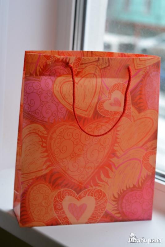 Иллюстрация 1 из 3 для Подарочный пакет из пластика, в ассортименте (DDPB) | Лабиринт - сувениры. Источник: Зеленая  Ау
