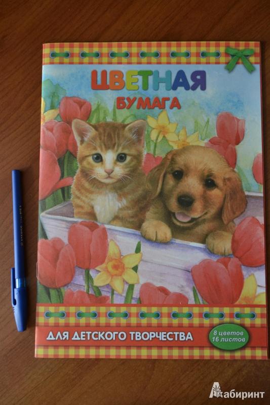 """Иллюстрация 1 из 5 для Цветная бумага """"Щенок и котенок"""", 16 листов 8 цветов (33600)   Лабиринт - канцтовы. Источник: juli_pani"""