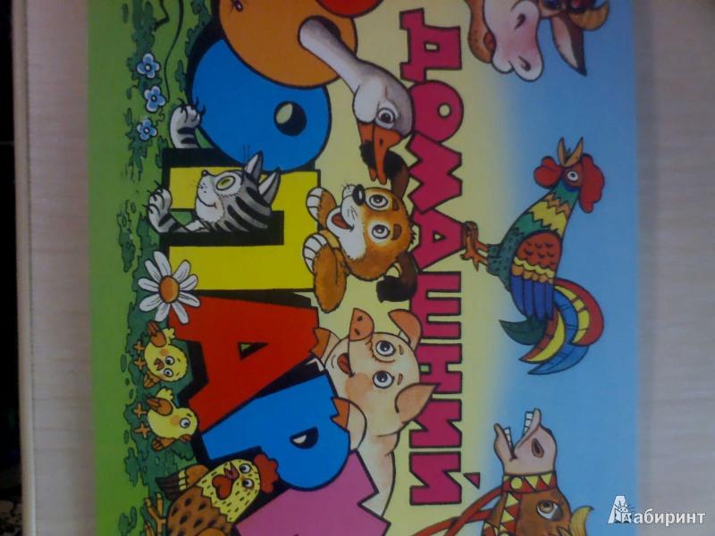 Иллюстрация 1 из 24 для Домашний зоопарк - Борис Эльшанский   Лабиринт - книги. Источник: Evgenya Ya