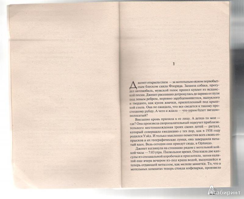 Иллюстрация 1 из 4 для Нормальных семей не бывает - Дуглас Коупленд   Лабиринт - книги. Источник: BlackSad