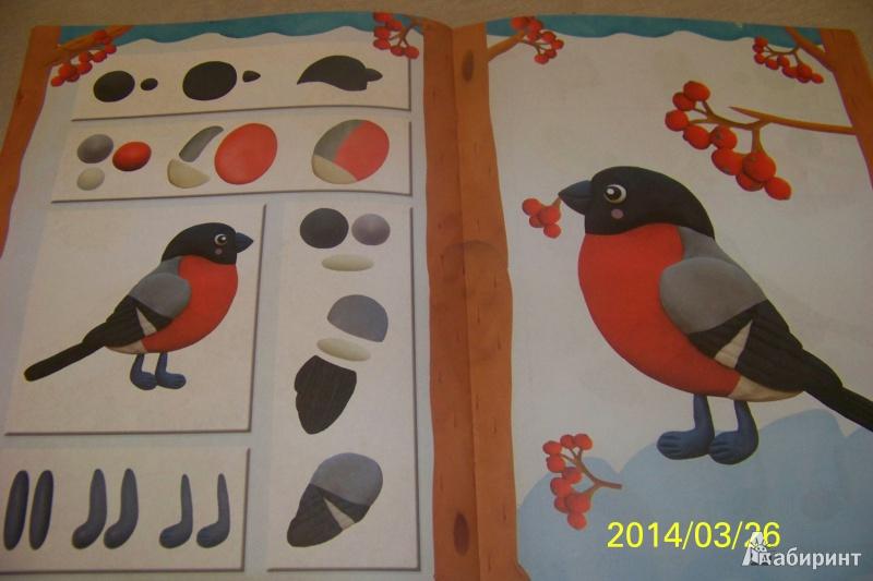 Как сделать птицу с пластилина