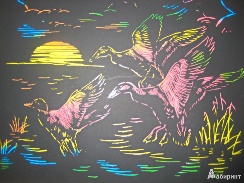 Иллюстрация 1 из 3 для Гравюра Утки (Гр089)   Лабиринт - игрушки. Источник: Глушкова  Татьяна