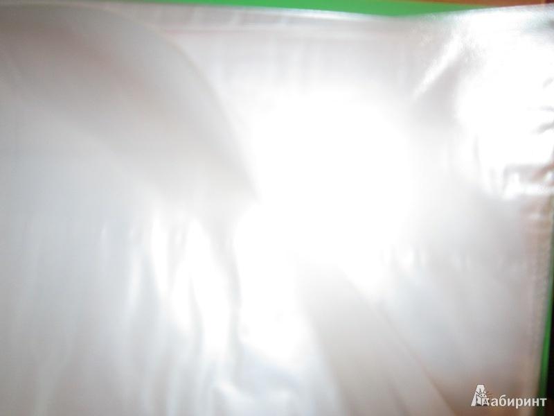 Иллюстрация 1 из 4 для Папка 30 файлов. А4. Пластиковая. Зеленая (CY1423-G) | Лабиринт - канцтовы. Источник: OWN