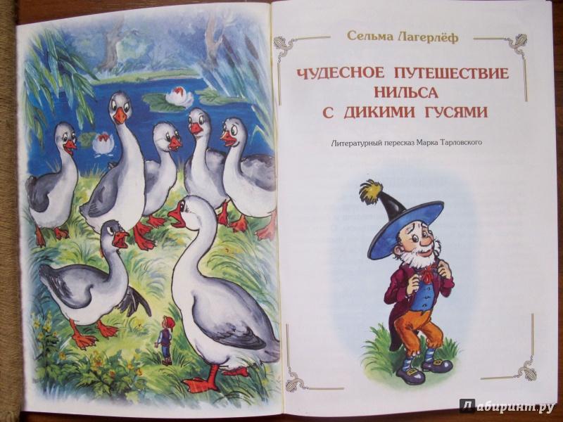 Рисунок нильса из сказки чудесное путешествие нильса с дикими гусями