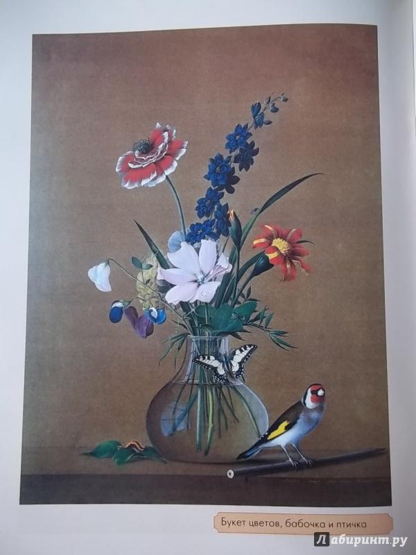 Иллюстрация 1 из 21 для Толстой - Наталия Соломко | Лабиринт - книги. Источник: Соня-А