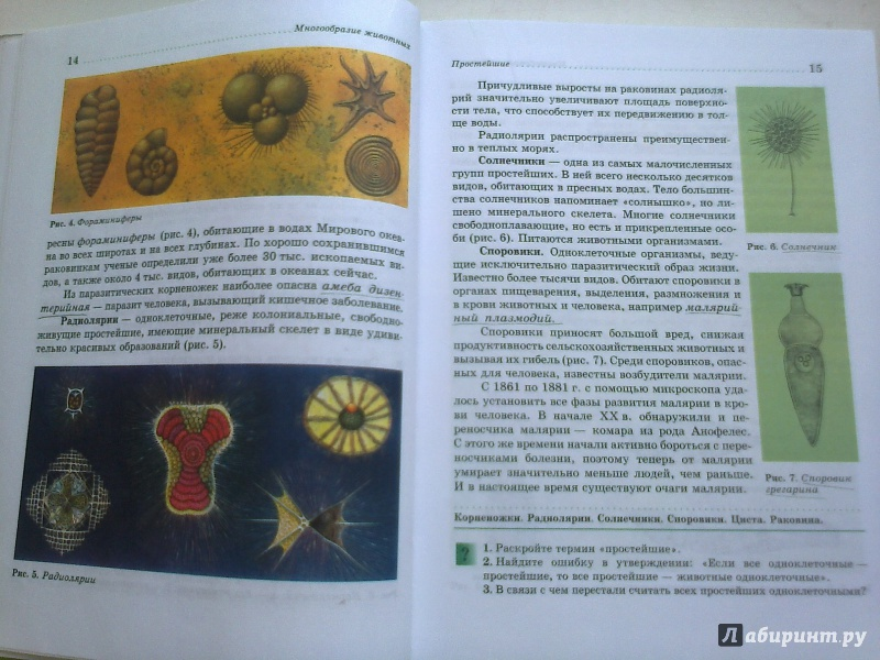 ГДЗ ГДЗ решебник по биологии 7 класс учебник Латюшин Шапкин (Ответы)