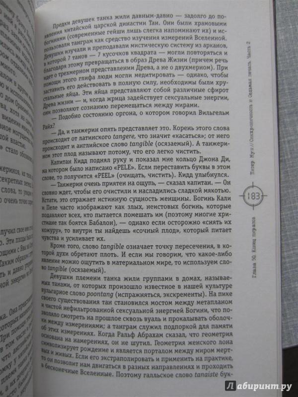 Иллюстрация 1 из 8 для Синхроничность и Седьмая Печать. Часть 2 - Питер Мун   Лабиринт - книги. Источник: Романовский  Виктор