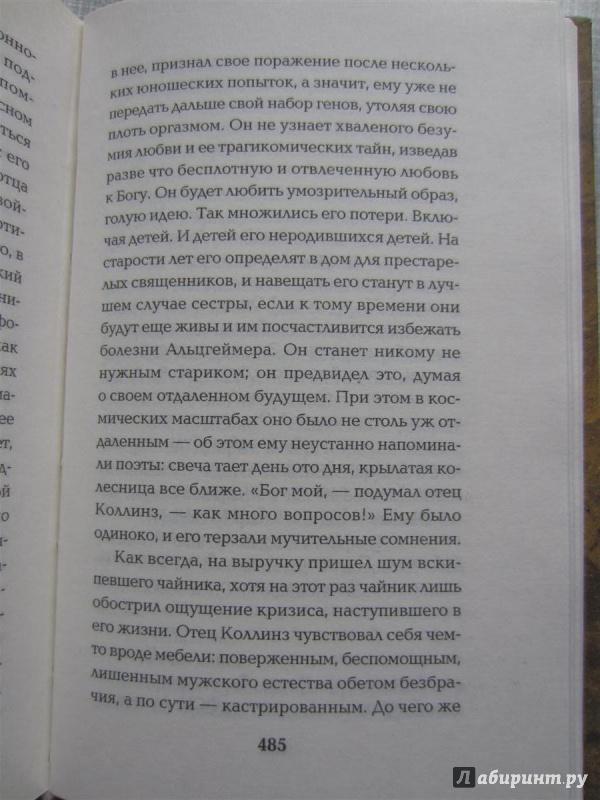 Иллюстрация 1 из 14 для Богоматерь лесов - Дэвид Гутерсон | Лабиринт - книги. Источник: Романовский  Виктор