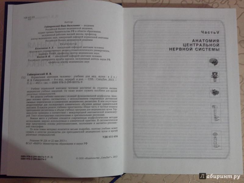 Сказки читать ирины пивоваровой