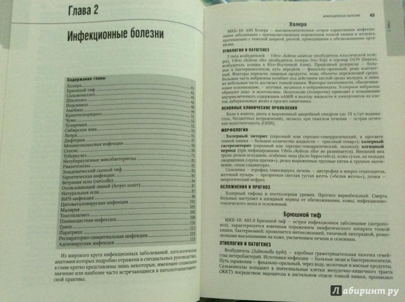 Национальное Руководство По Патологической Анатомии Читать - фото 7