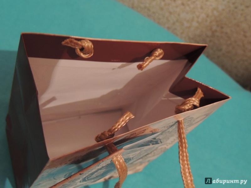 Иллюстрация 1 из 5 для Пакет бумажный для сувенирной продукции 11,1x13.7x6.2 (32562) | Лабиринт - сувениры. Источник: Шибаева  Вера Викторовна
