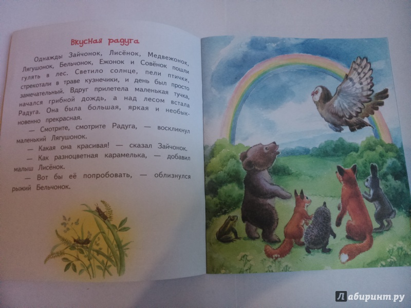 Иллюстрация 1 из 30 для Вкусная радуга - Елена Ермолова | Лабиринт - книги. Источник: SoleNn
