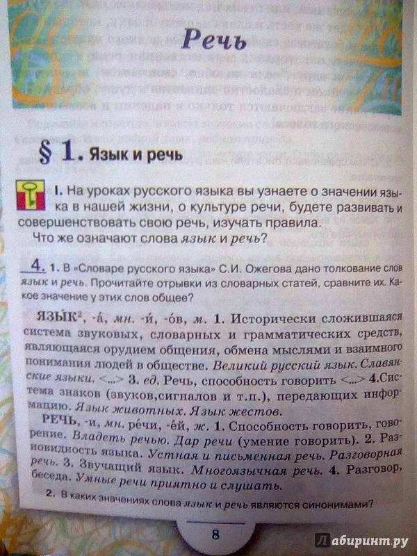 язык руский скачать 6клас быстрова решебник