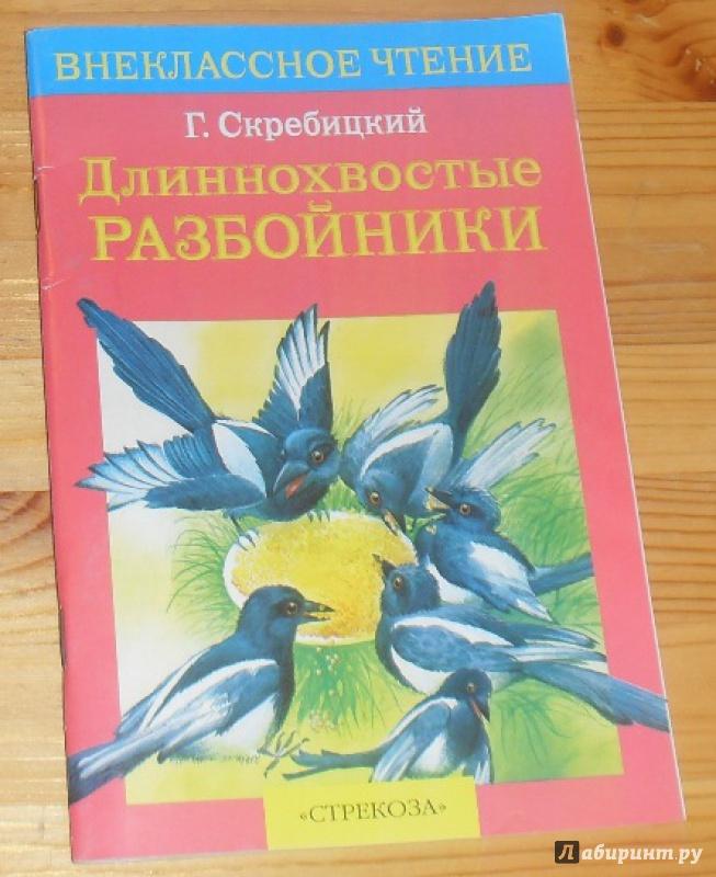 Иллюстрация 1 из 11 для Длиннохвостые разбойники - Георгий Скребицкий   Лабиринт - книги. Источник: anko15