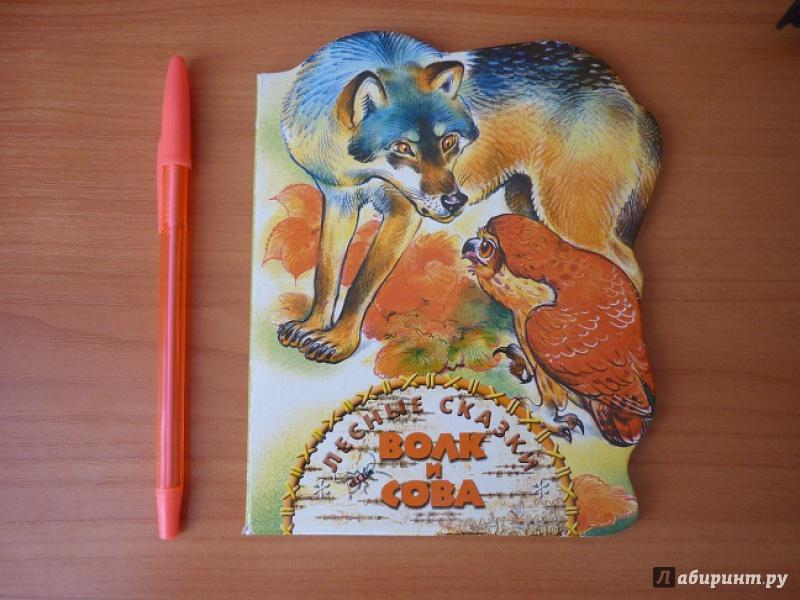 Иллюстрация 1 из 7 для Волк и сова - Николай Сладков   Лабиринт - книги. Источник: zartes_reh
