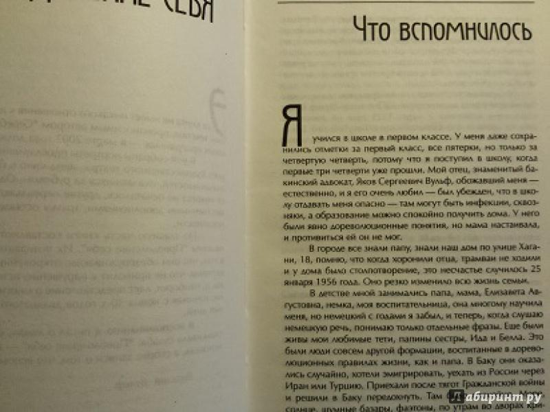 Иллюстрация 1 из 13 для Серебряный шар - Виталий Вульф | Лабиринт - книги. Источник: frida2014