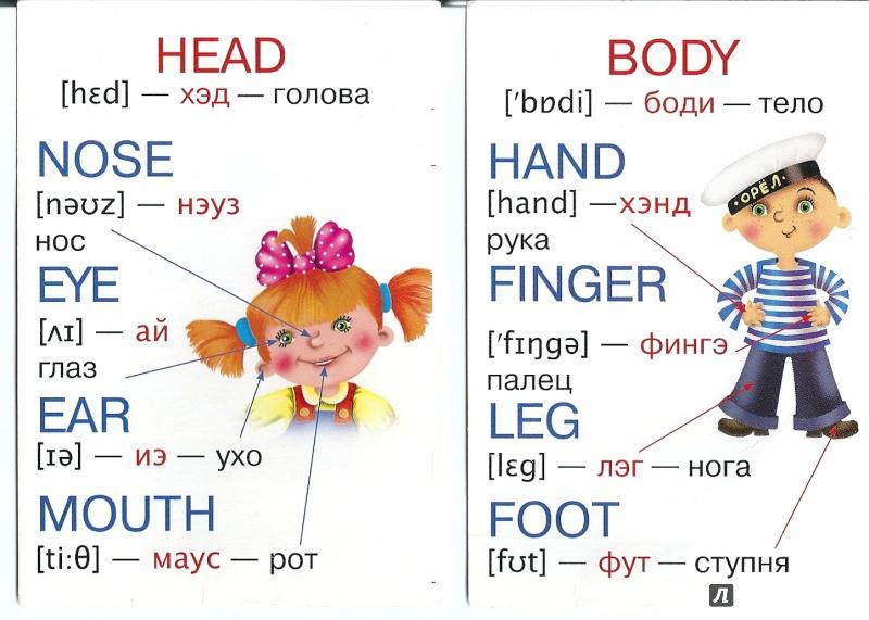 карточки по английскому языку знакомство