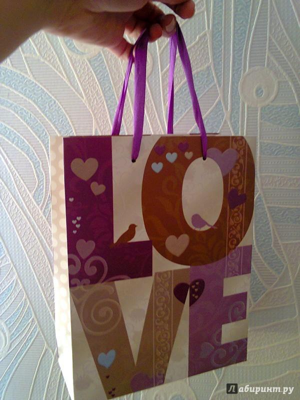 Иллюстрация 1 из 3 для Пакет бумажный для сувенирной продукции 18*23*10 см (33672) | Лабиринт - сувениры. Источник: Sonya Summer