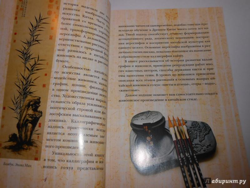 Иллюстрация 1 из 21 для Китайская живопись и каллиграфия. Уроки для начинающих (+DVD) - Жуй, Утянская | Лабиринт - книги. Источник: Леан