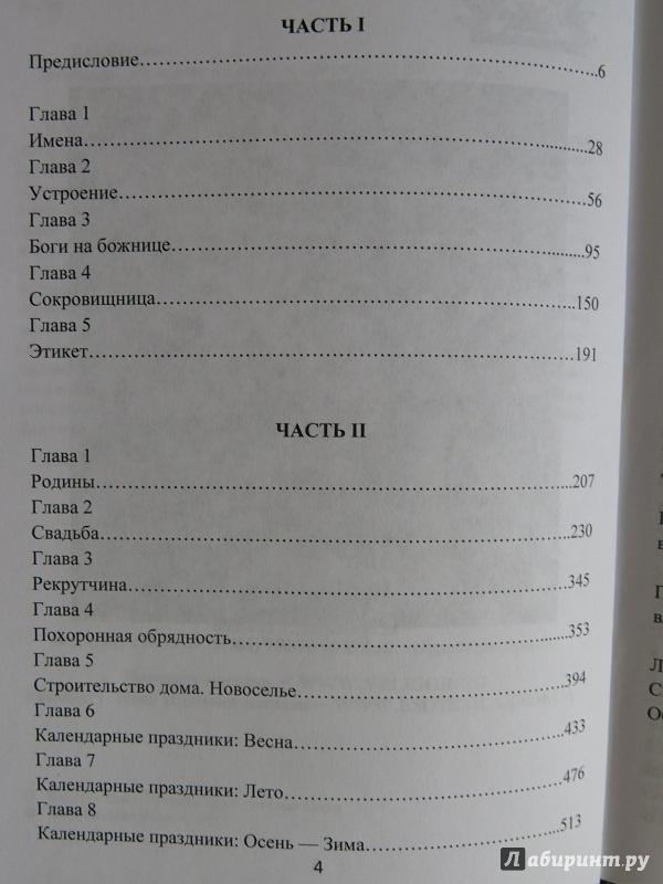 Иллюстрация 1 из 4 для Божница. Домашнее языческое святилище - Волхв Богумил   Лабиринт - книги. Источник: Жива Велеслава