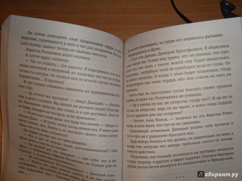 Иллюстрация 1 из 11 для Ф.М. Том 2 - Борис Акунин   Лабиринт - книги. Источник: Ярославцева  Марина Викторовна