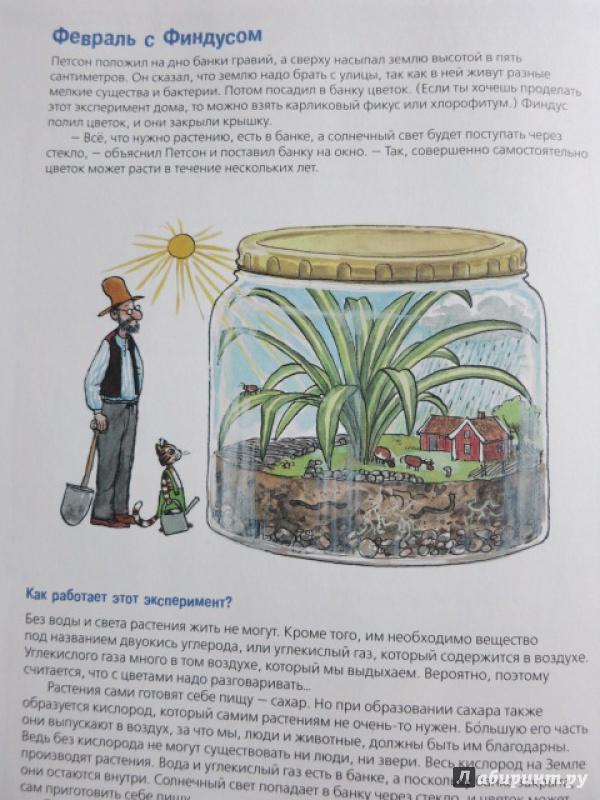 Сделать своими руками растения из красной книги