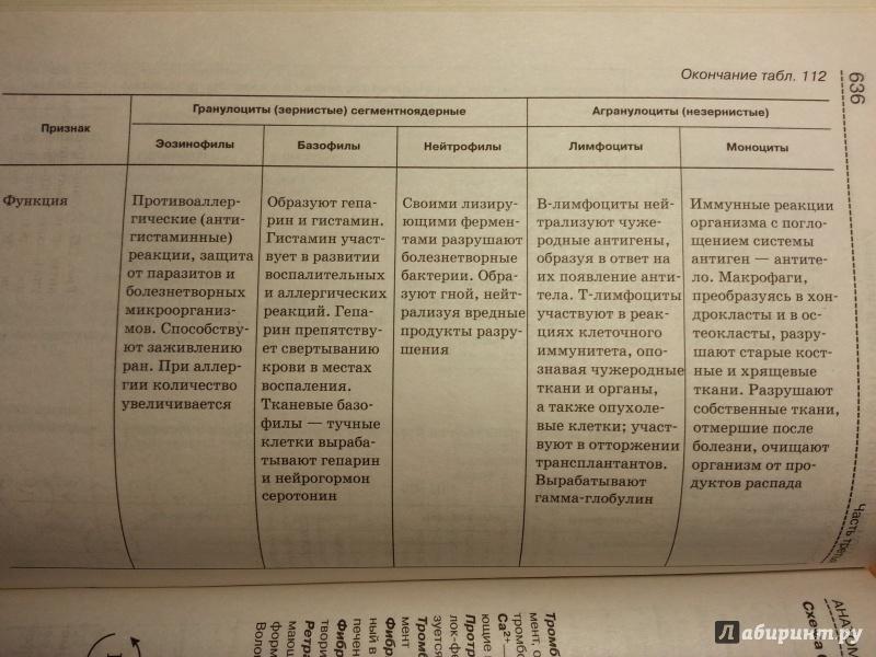 Справочник биология богданова
