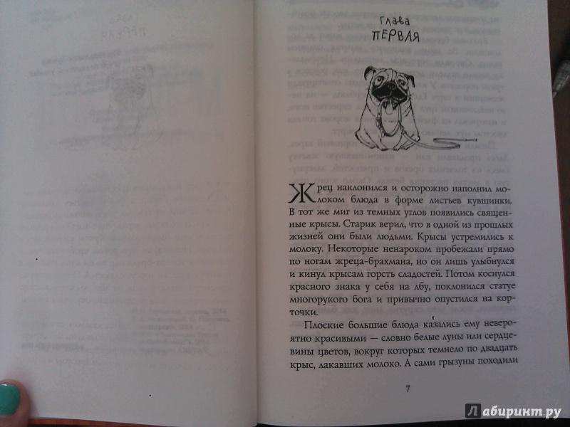 Иллюстрация 1 из 24 для Молли Мун и путешествие во времени - Джорджия Бинг | Лабиринт - книги. Источник: Фридлейн  Ольга