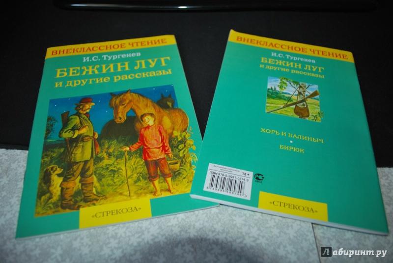 Иллюстрация 1 из 9 для Бежин луг и другие рассказы - Иван Тургенев | Лабиринт - книги. Источник: Журавлёва  Анна