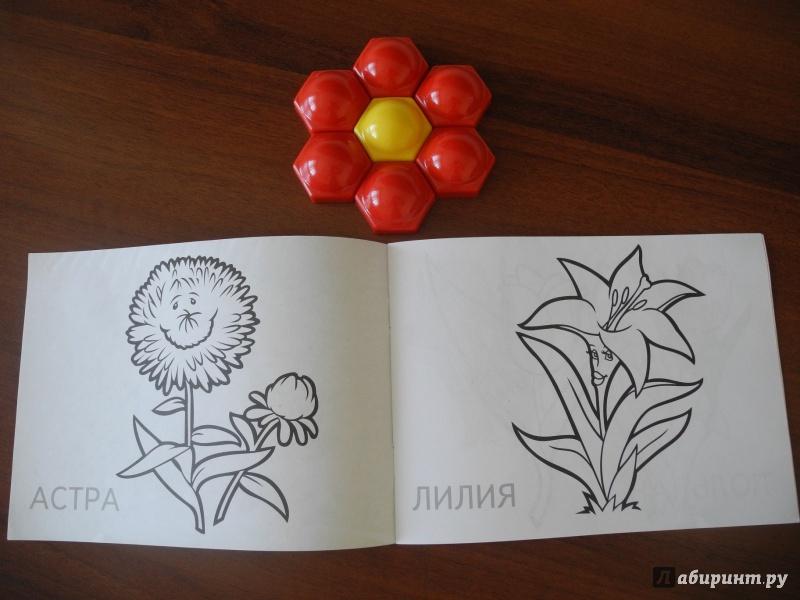 Иллюстрация 1 из 10 для Цветы | Лабиринт - книги. Источник: Бархатова  Елена Владимировна