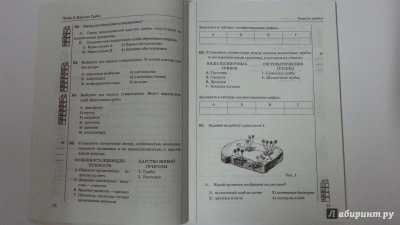 итоговый тест по биологии 6 класс пасечник
