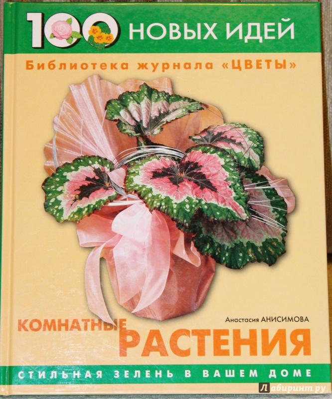 Иллюстрация 1 из 15 для Комнатные растения - Анастасия Анисимова | Лабиринт - книги. Источник: E.B.